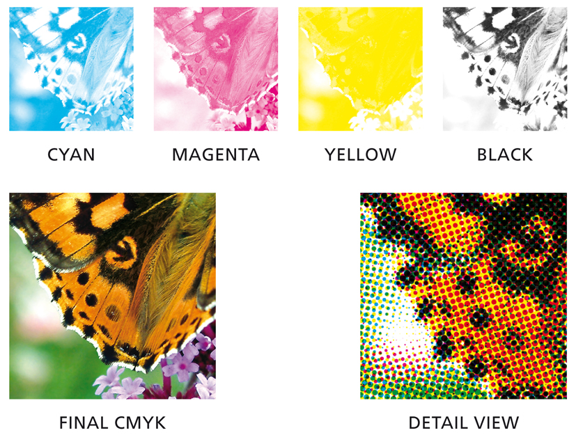 difference between spot color and cmyk color